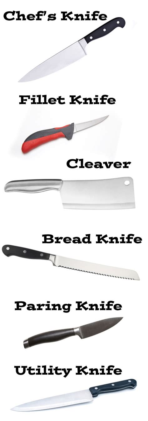 different types of kitchen knives 1000 images about kitchen knives on different