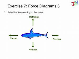 Forces Types Of Forces Contact And Non