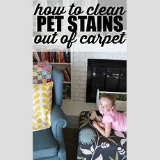 How To Clean Pet Stains Out Of Carpet  My Life And Kids