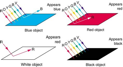 Color And Color Vision