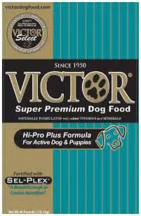grain  puppy food  buy