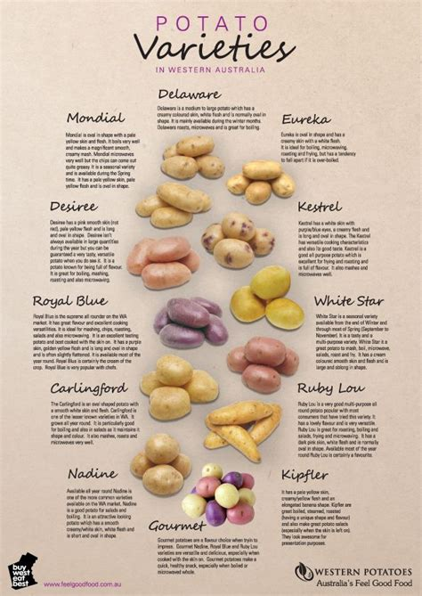 different types of potatoes recipes types of potatoes and their uses herbs ulam pinterest different types of types of