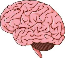 Vector Illustration Of Human Brain Cartoon