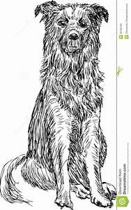 Sitting Dog Royalty Free Stock Photos - Image: 26792108  Sitting