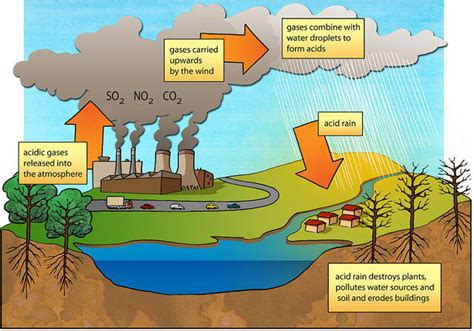 how to form acid rain effects of air pollution lesson 0048 tqa explorer