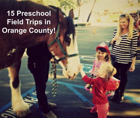 15 preschool field trips in orange county socal field trips 226 | best preschool field trips in orange county