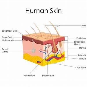 acne | Beauty Salon Swan Hill Call 03 5032 3757 Best ...