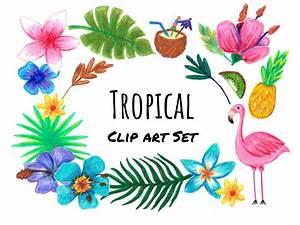 Hand Drawn Tropical Clip Art, hand drawn tropical clipart ...