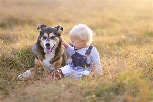 Haustiere Für Kinder : haustiere f r kids diese tierischen freunde passen am besten ~ Orissabook.com Haus und Dekorationen