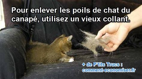 comment nettoyer pipi de chat sur canape enlever urine de chat sur canape 28 images nettoyer l urine de chat sur les textiles