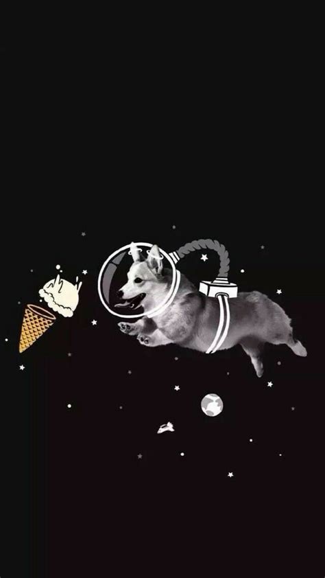 Select your favorite images and download them for use as wallpaper for your desktop or phone. Pin by Hendie Purwiliarto on Phone Backgrounds - Hipster 27 | Corgi wallpaper, Dog wallpaper ...