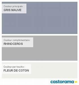 harmonie couleur salon interesting best harmonie couleur With good couleur associe au gris 6 12 deco salon et chambre avec une peinture couleur taupe i