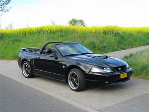 New pics of my 2004 Mustang Gt convertible - Ford Mustang Forum