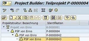 Sap Lieferschein Anzeigen Transaktion : projektsystem hierarchie psp element ndern tricktresor ~ Themetempest.com Abrechnung