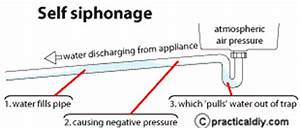 Noises In The Plumbing Pipes Explained