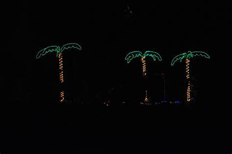 palm tree christmas decoration  stock photo public