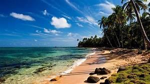 Bilder Am Strand : herunterladen 1920x1080 full hd hintergrundbilder strand tropisch palmen meer wasser himmelblaue ~ Watch28wear.com Haus und Dekorationen