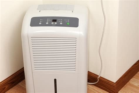 Bedroom Humidifier by Best Humidifier For Bedroom Ultrasonic Best
