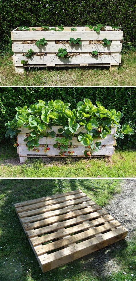 diy garden planter ideas  wood pallets hative