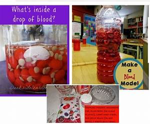 Year 4  What U00b4s Inside A Drop Of Blood   U2013 Mad Lab