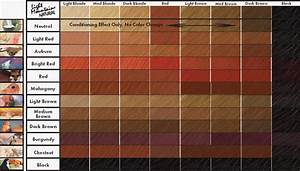 Auburn Red Hair Color Chart Satisfying Hair Notebook