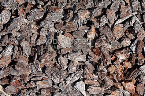 pine tree bark chips  garden texture pinus radiata