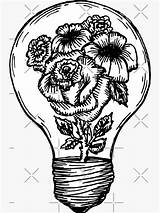 Lightbulb Flower Bulb Pencil Drawings Sticker Redbubble Line Tattoo Hein Meagan Coloring Drawing Grenade sketch template