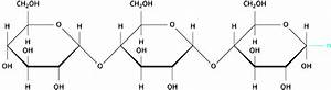Basic Chemical Structure Of Polymeric Starch