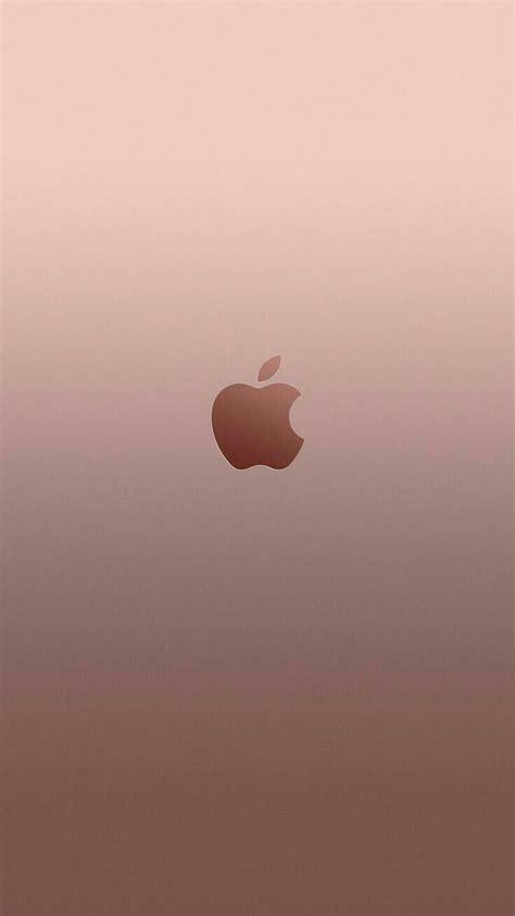 rose gold apple rose gold wallpaper iphone  wallpaper