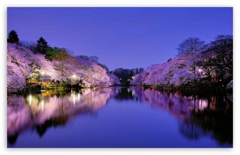 Osaka, Japan 4k Hd Desktop Wallpaper For 4k Ultra Hd Tv