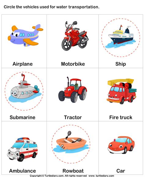 Types Of Water Transport Worksheet
