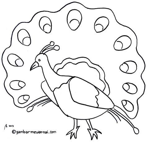 gambar mewarnai binatang sketsa hewan