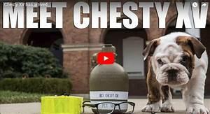Marine Corps Poolee Video Marine Corps Chesty Xv Has Arrived Bulldog Mascot