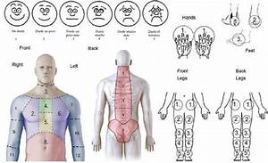 Body Diagram And Facial Pain Scale Used To Identify