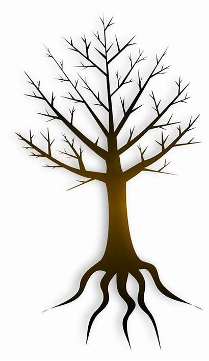 Tree Trunk Publicdomainfiles Clip Domain Pdf Restrictions