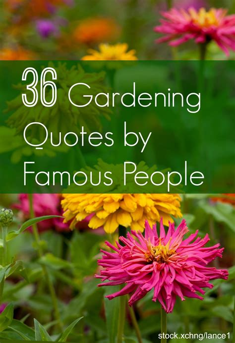 garden quotes  gardening quotes  famous people