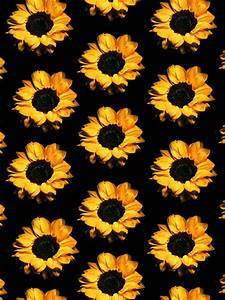 Photo Collection Sunflower Tumblr Wallpaper