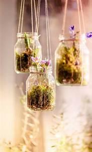 Blumenzwiebeln Im Glas : die besten 17 ideen zu gl ser dekorieren auf pinterest flaschenkunst ostern und k rbe dekorieren ~ Markanthonyermac.com Haus und Dekorationen
