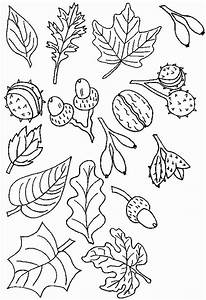 Feuilles D Automne à Imprimer : nos jeux de coloriage automne imprimer gratuit ~ Nature-et-papiers.com Idées de Décoration