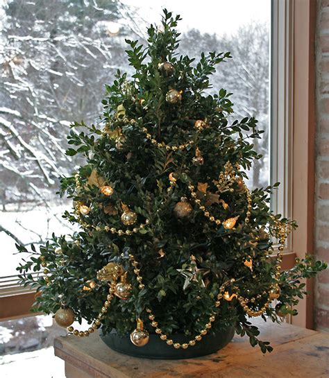 tabletop christmas tree casual cottage