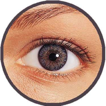 lenses uk freshlook colorblends contact lenses direct from the uk at