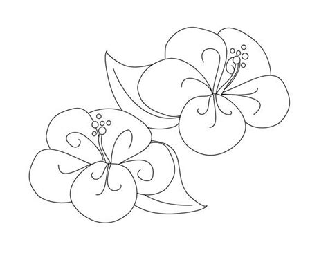 fancy hibiscus flower coloring page fancy hibiscus flower