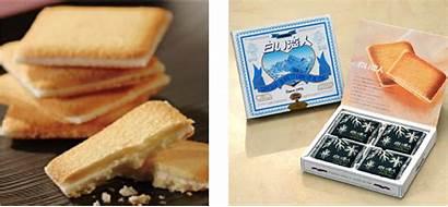 Shiroi Japanese Japan Koibito Snacks Shopandbox
