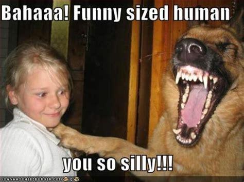Crazy Bitch Meme - you are crazy meme www pixshark com images galleries with a bite