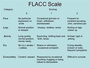 Flacc Scale Chart Painscore