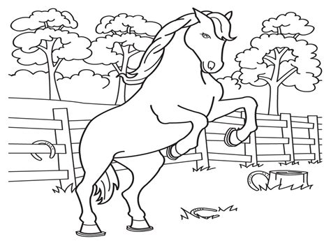 Coloring Horses Pages by Coloring Pages Coloring Pages Free And Printable