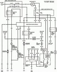 Honda St1300 Wiring Diagrams Lights