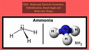 Nh3 Molecular Geometry  Hybridization  Bond Angle And