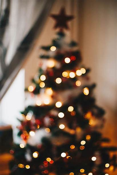 Lights Tree String Pexels Say Thanks Photographer