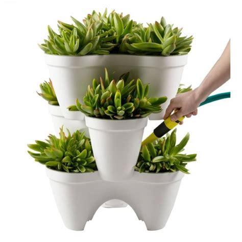 pot bunga unik lucu menggemaskan dirumahkucom